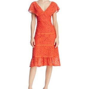 Nanette Lepore 16 Midi Lace Flounce Hem Dress